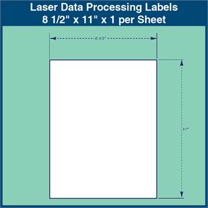 laser data processing labels 8 1 2 x 11 x 1 per sheet 1 000 sheets